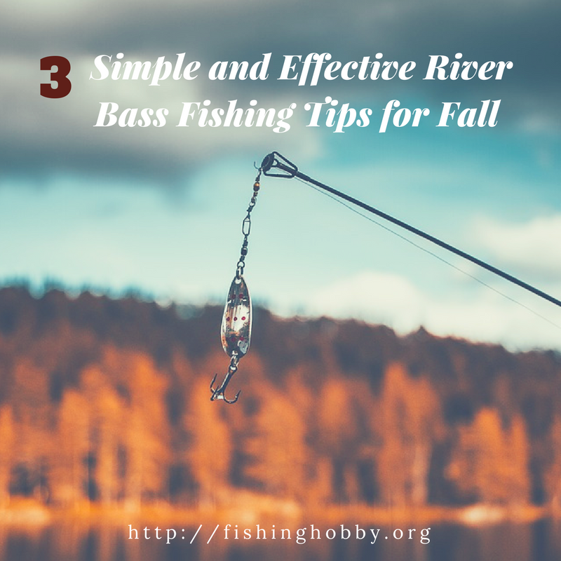 river bass fishing tips