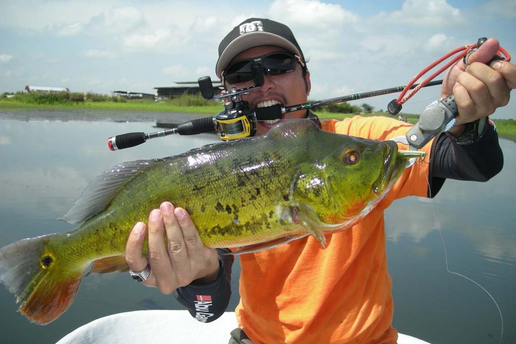 holding bass fish the right way